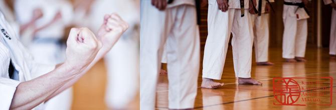 Karateakademin